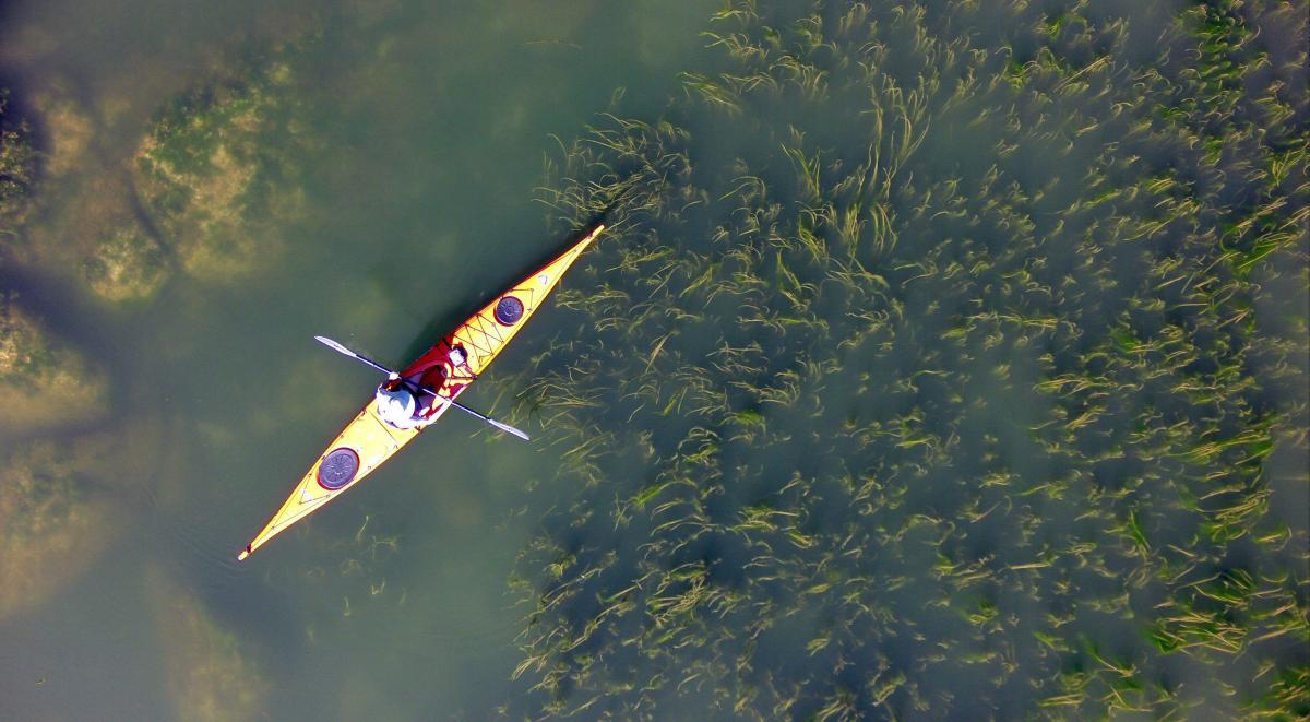 Natasha Drone Aerial.JPG