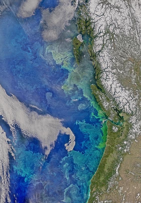 VIIRS Image , Courtesy of NASA