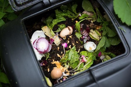 Photo via https://www.diynetwork.com/how-to/outdoors/gardening/organic-compost-