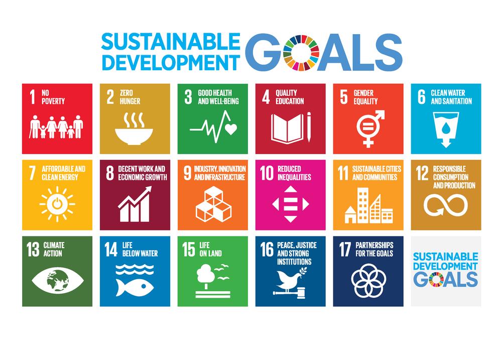SDG goal.png