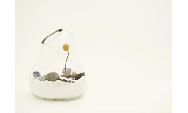 litill-terrariums-4