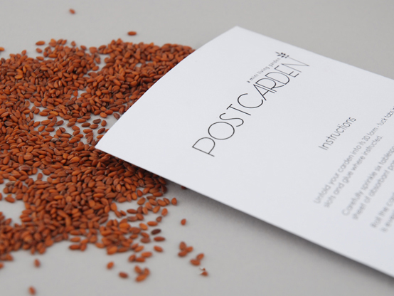 Seeds_web