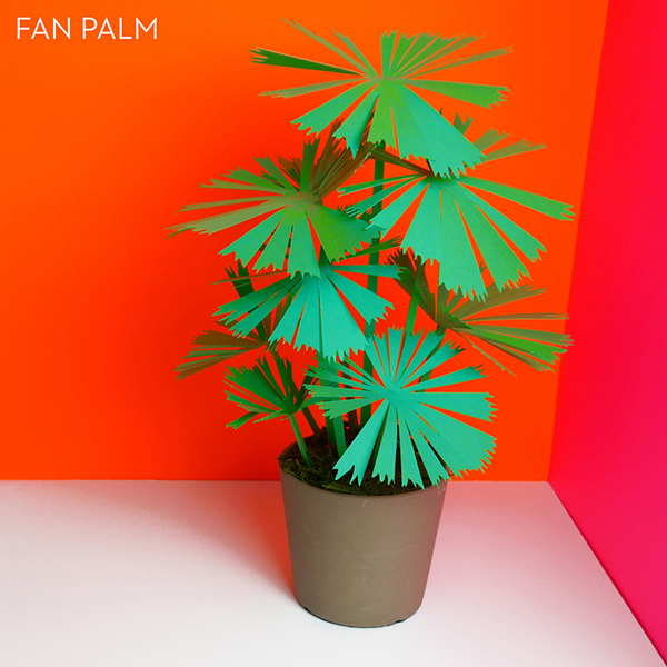 4_Paper_Plants_Product_O_P_fan_palm_labled_1024x1024