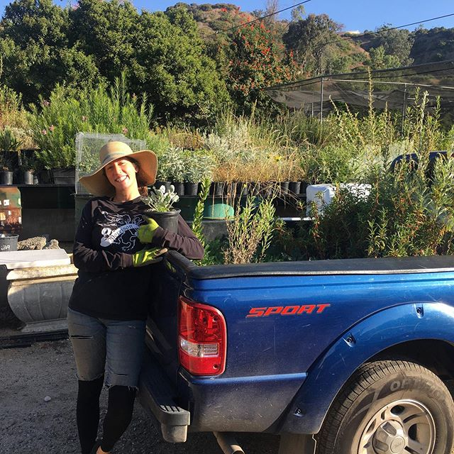Big thanks to @ecourbangardens for planting #local #nativeplants and supporting our work at the same time! #rewildla #griffithpark #commonwealthnursery #growninla
