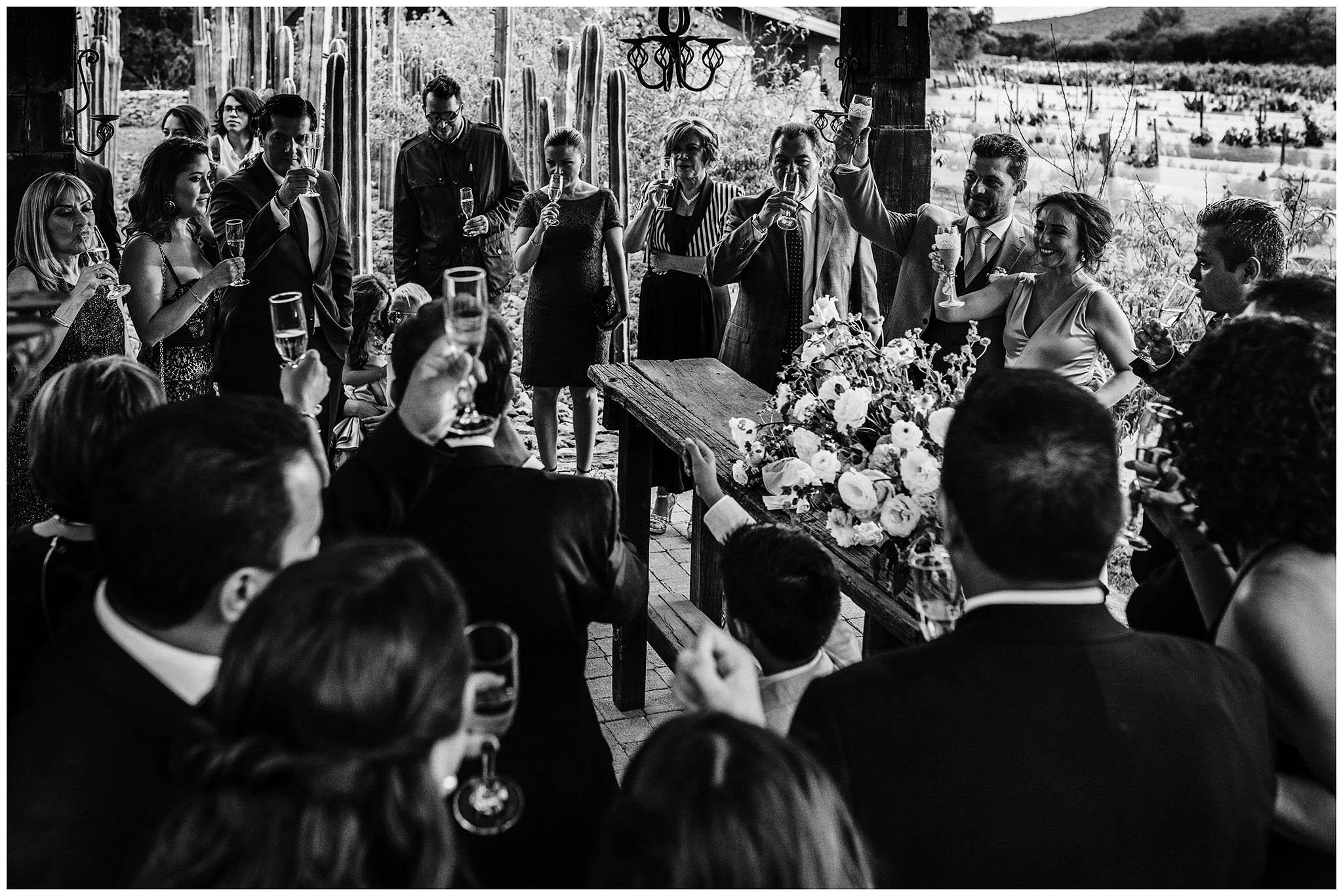 fotografo-bodas-viñedo-puerta-lobo-029.jpg