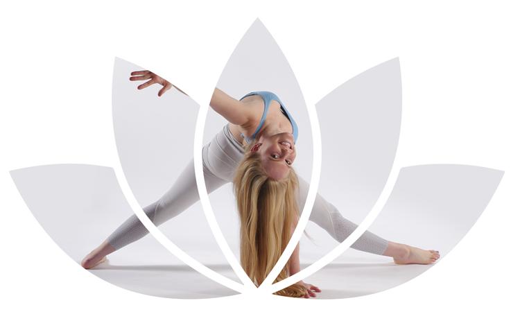 Lotus-All-Levels-Vinyasa.png