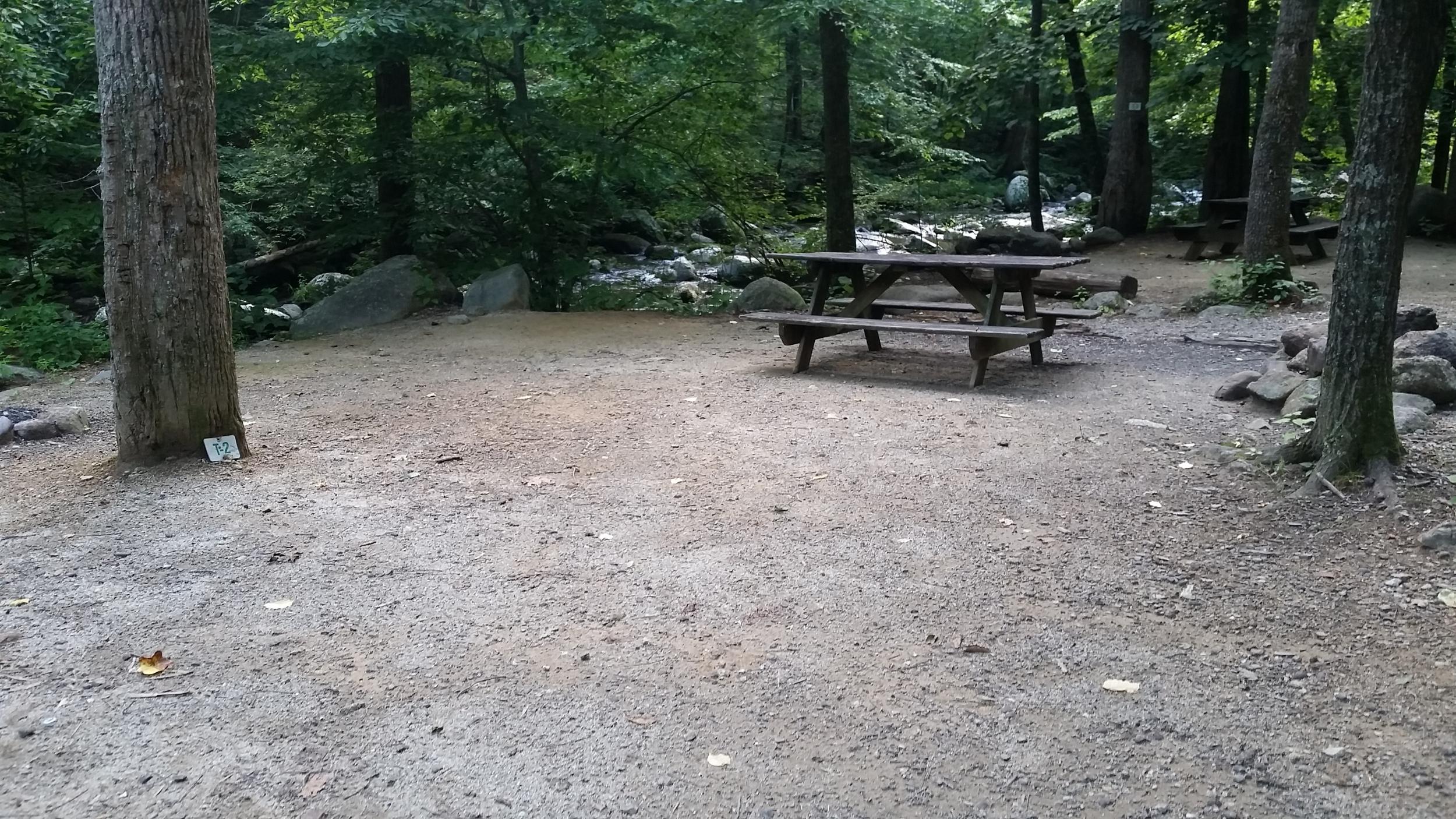 Site T2