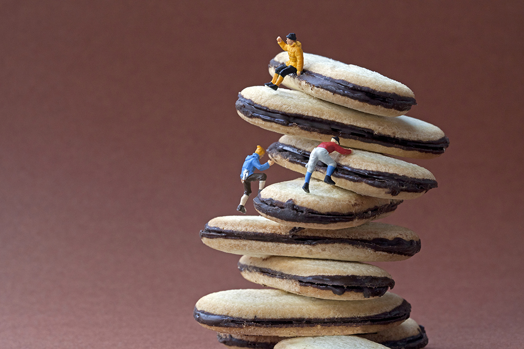 cookie+climbers+COPYRIGHTED+IMAGE+Please+don't+repost+without+permission.jpg