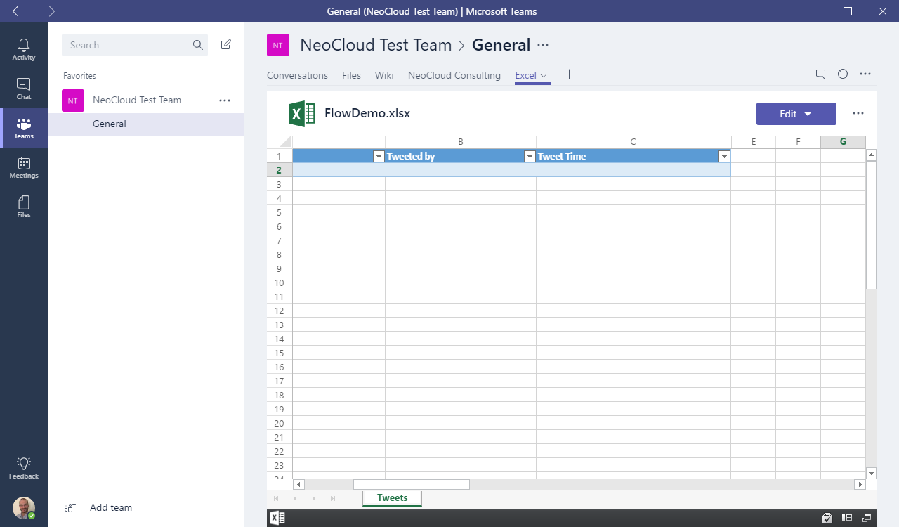 Microsoft Team Excel File Window