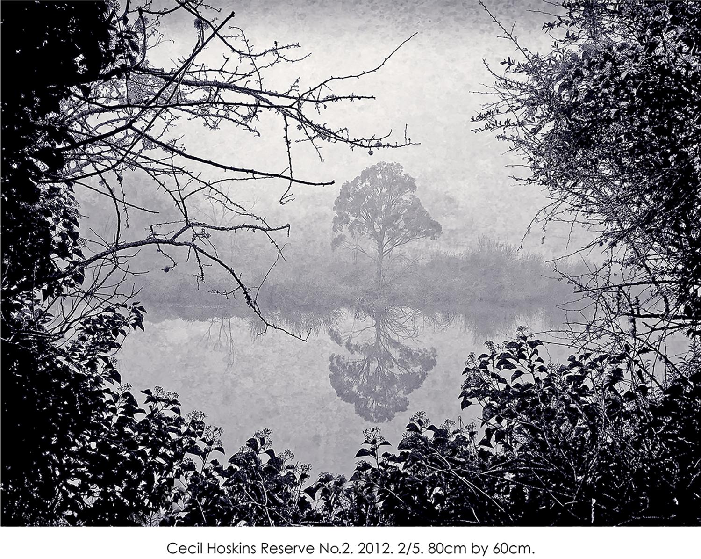 Cecil Hoskins Reserve no.2 copy.jpg