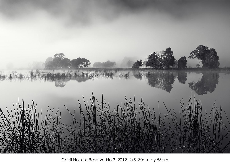 Cecil Hoskins Reserve no.3.jpg