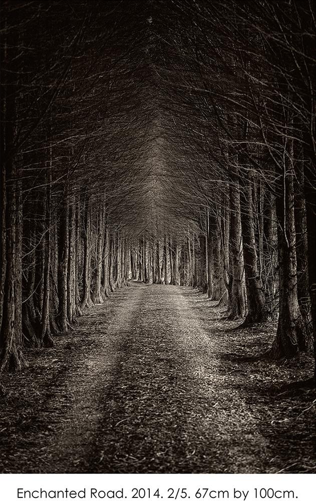 Enchanted Road.jpg