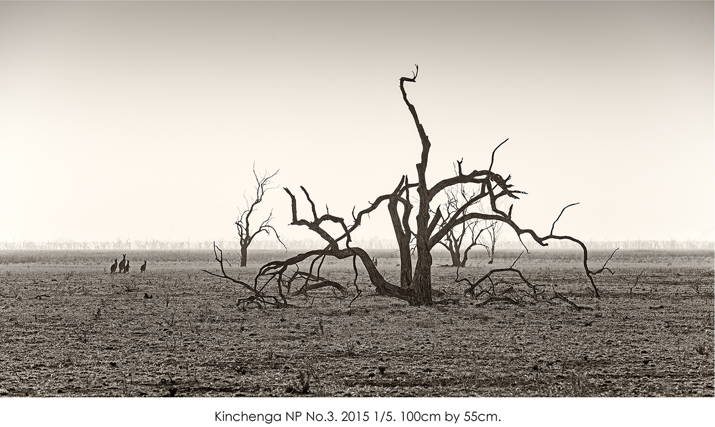 Kinchenga NP No.3.jpg