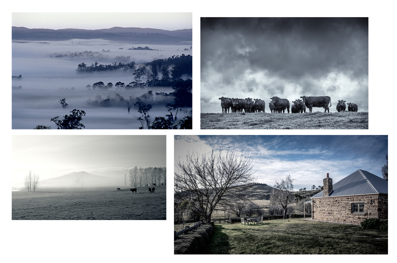 Landscape-4-ver-2.jpg