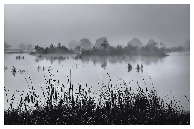 Cecil-Hoskins-Reserve.jpg