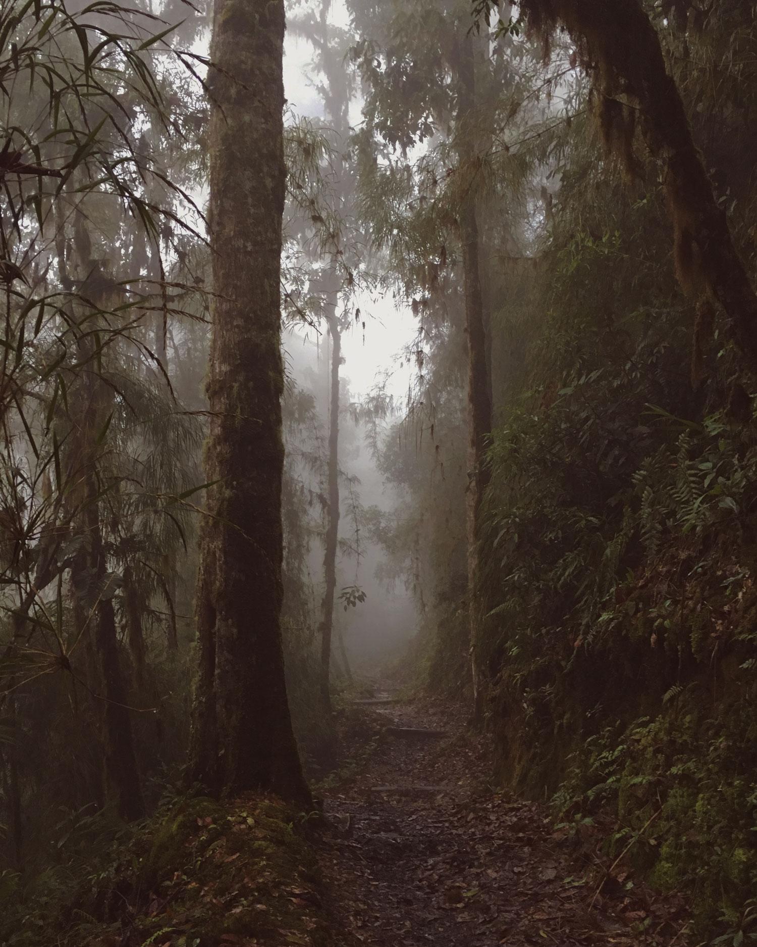 cerro-chiripo-costa-rica-wander-south-4.jpg