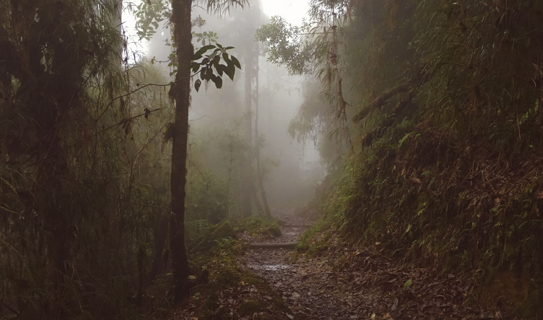 cerro-chiripo-costa-rica-wander-south-5.jpg