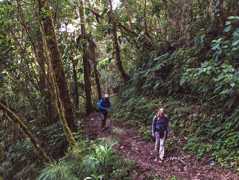 cerro-chiripo-costa-rica-wander-south-10.jpg