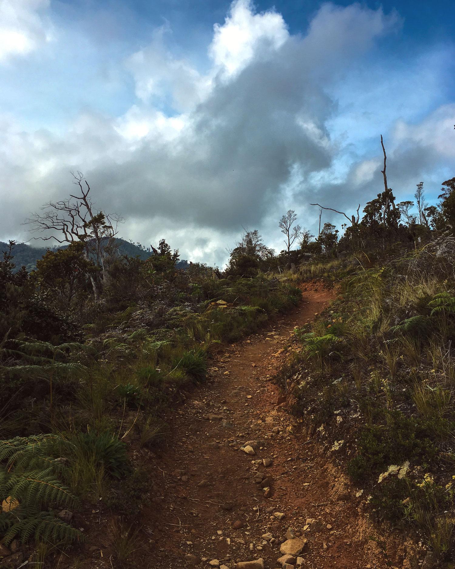 cerro-chiripo-costa-rica-wander-south-18.jpg