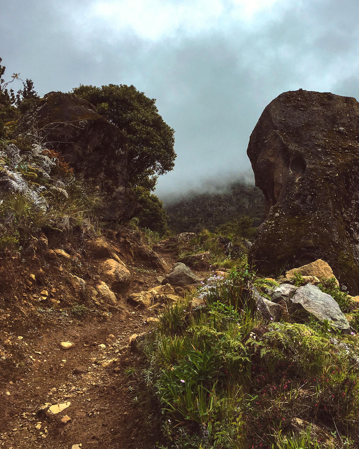 cerro-chiripo-costa-rica-wander-south-22.jpg