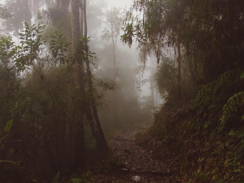 cerro-chiripo-costa-rica-wander-south-6.jpg