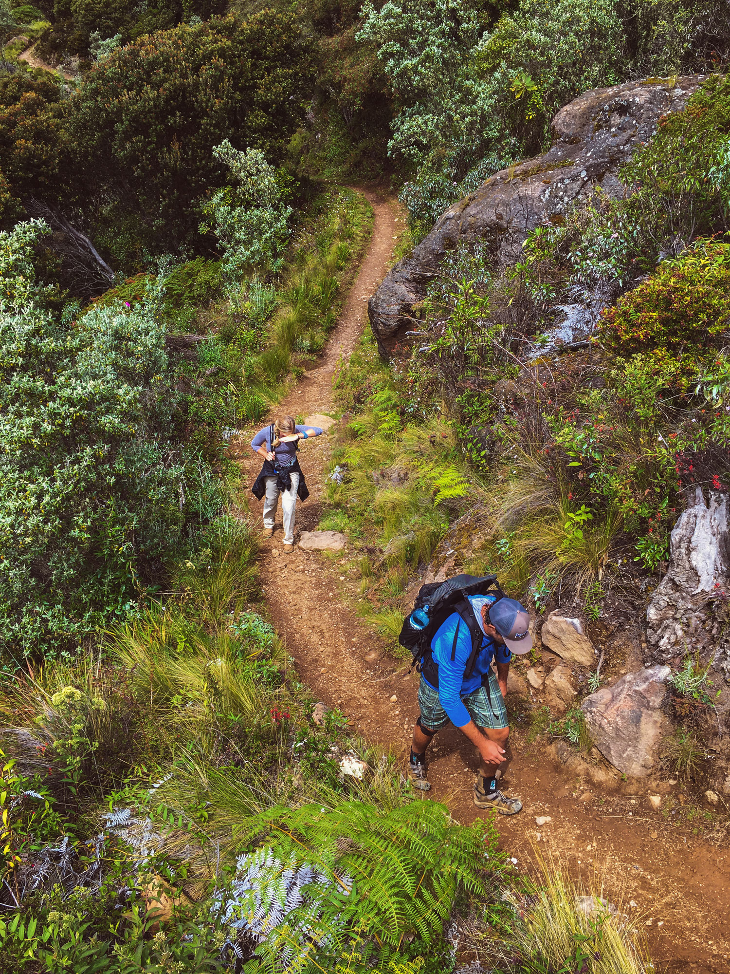 cerro-chiripo-costa-rica-wander-south-19.jpg