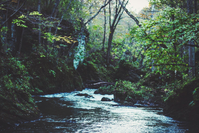 Tubing down rio claro