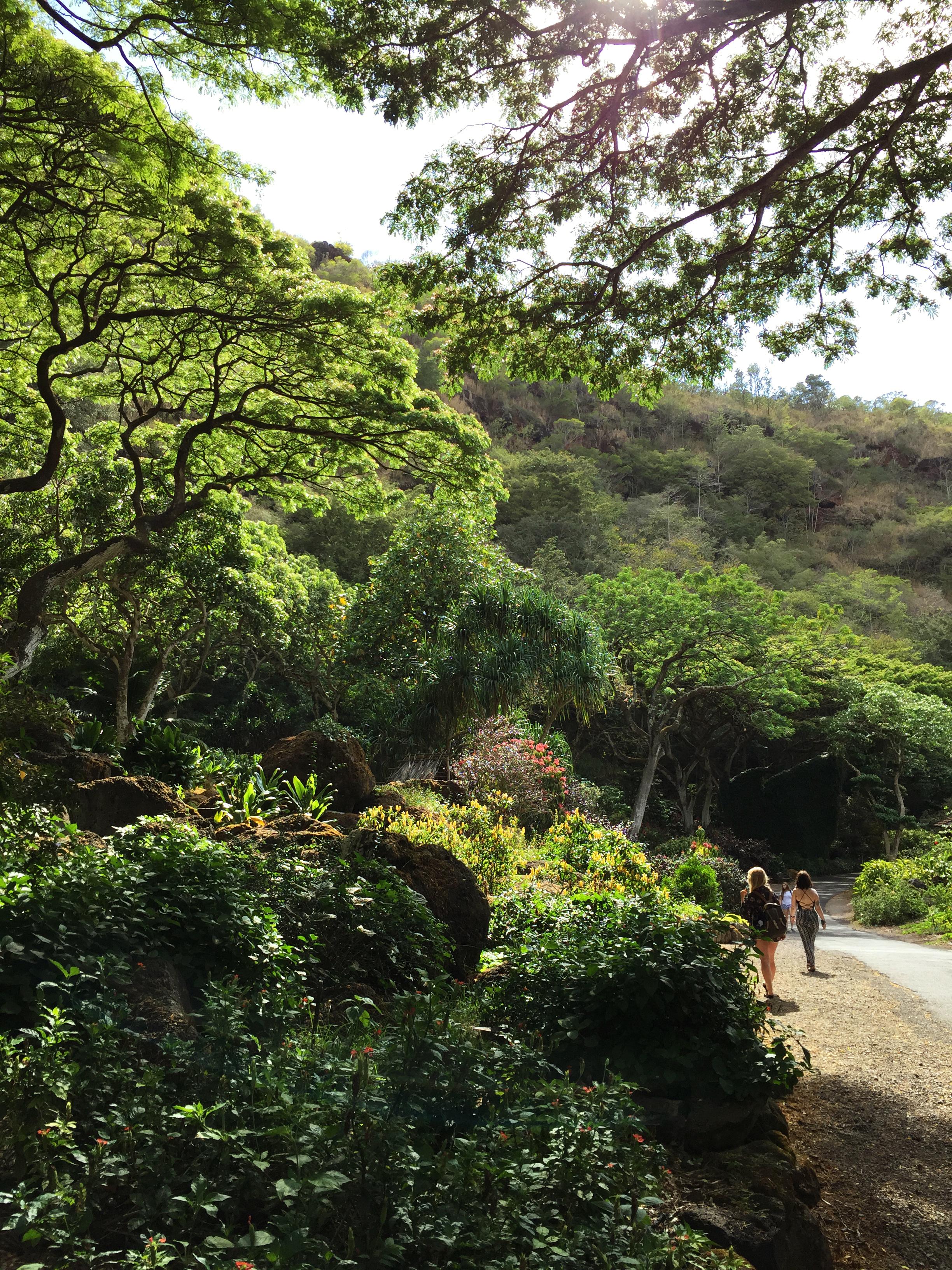 28.hawaii.jpg