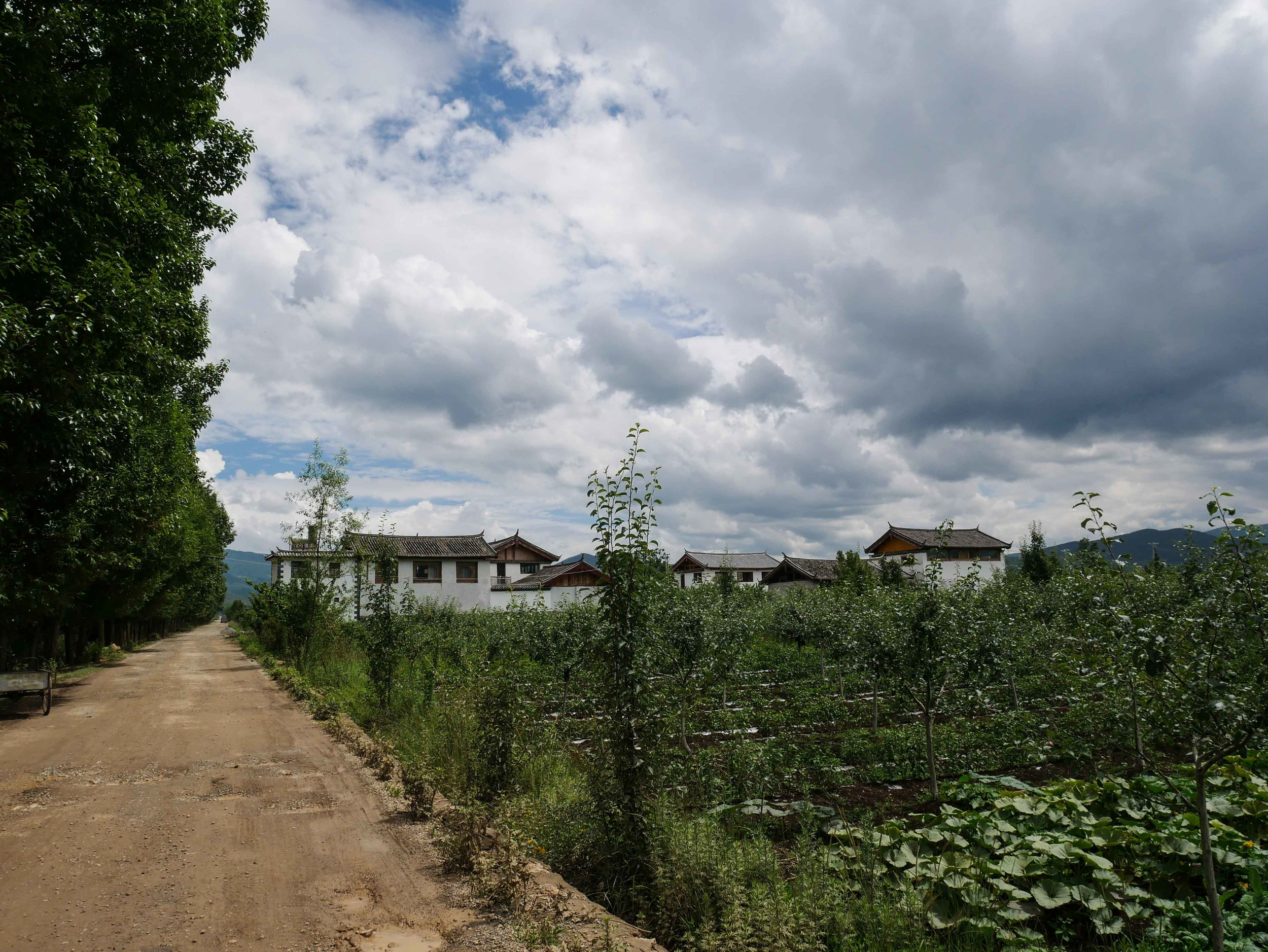 I have just landed in the countryside of the Yunnan province in southwest China, where I'll be in residence for a month at  Lijiang Studio  - a unique artist residency embedded in village life of an area called Lashihai.
