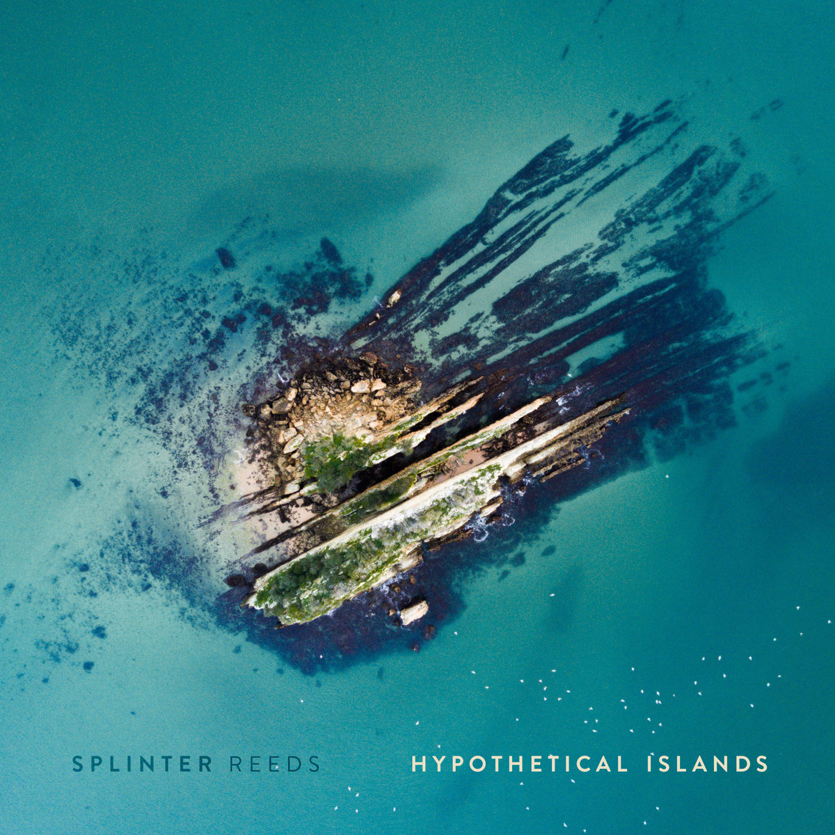 Copy of Splinter Reeds - Hypothetical Islands