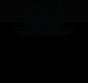 Nord_Anglia_International_School_New_York_Logo.png