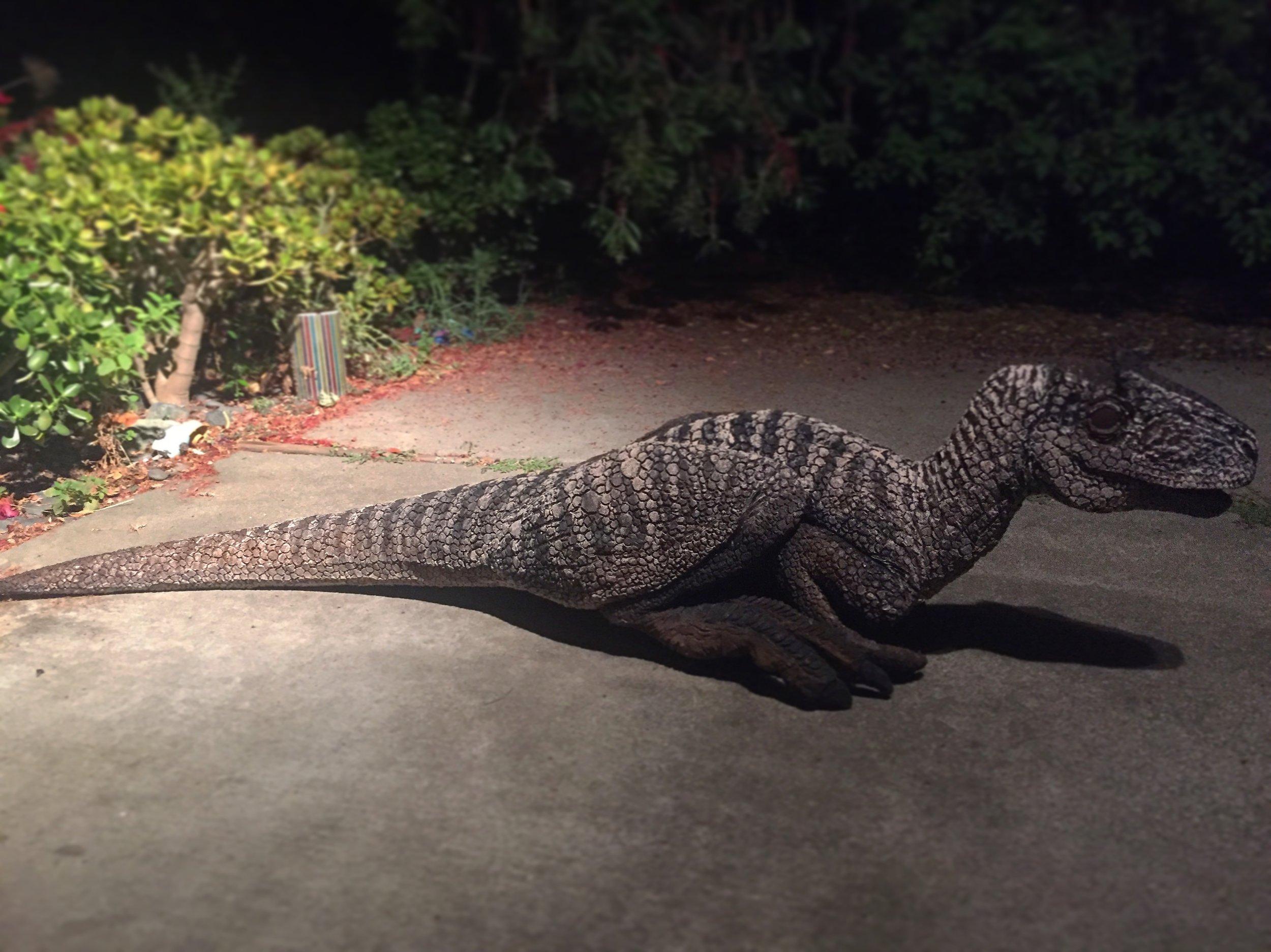 Allosaurus puppet