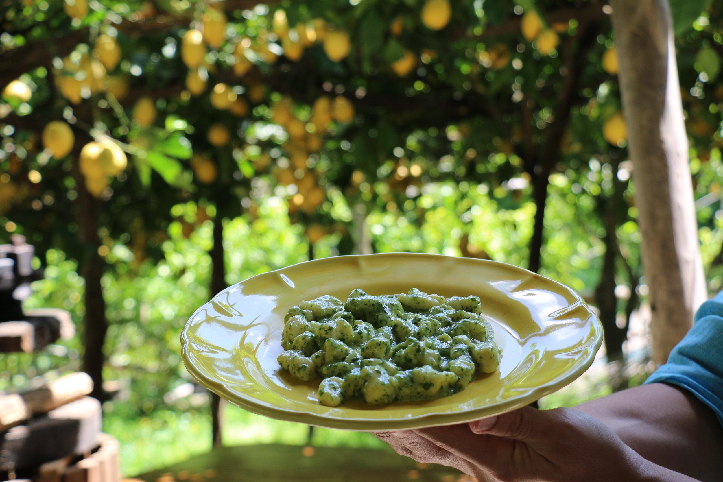 Our 3rd dish: Handmade Lemon Gnocchi tossed in fresh made pesto