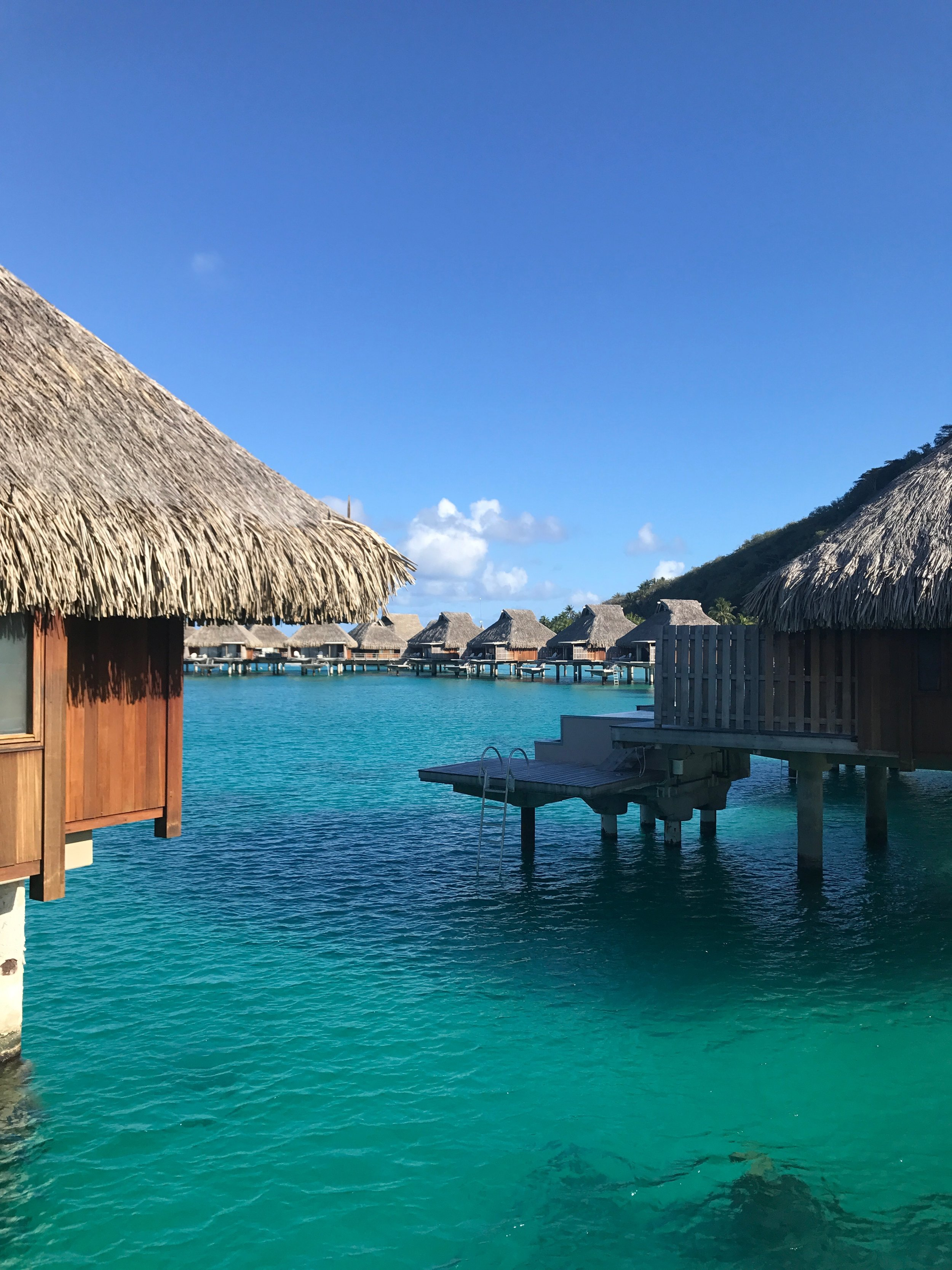 Be sure to look down when you pass by your neighbors, there is usually a lot of fish swimming in the lagoon below each villa. The water is clear enough for you to see the bottom if relatively shallow