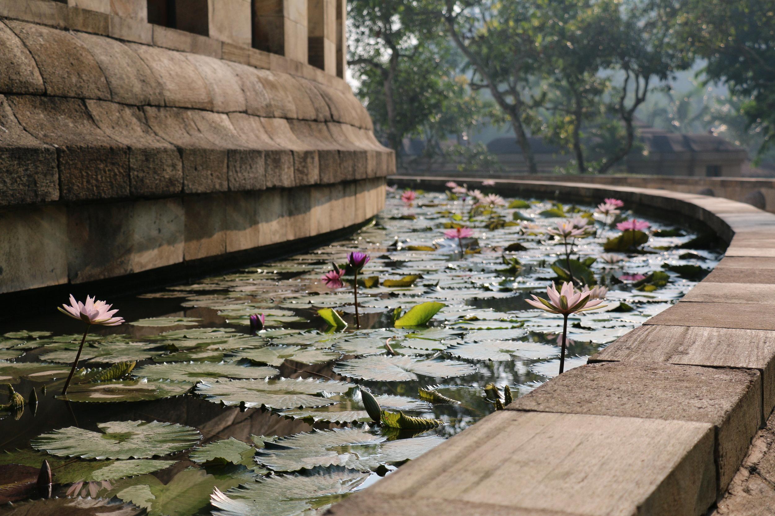 Lily ponds surround the main rotunda