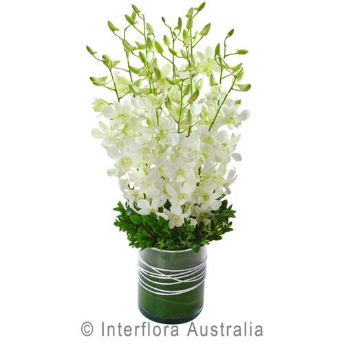 Interflora4.jpg