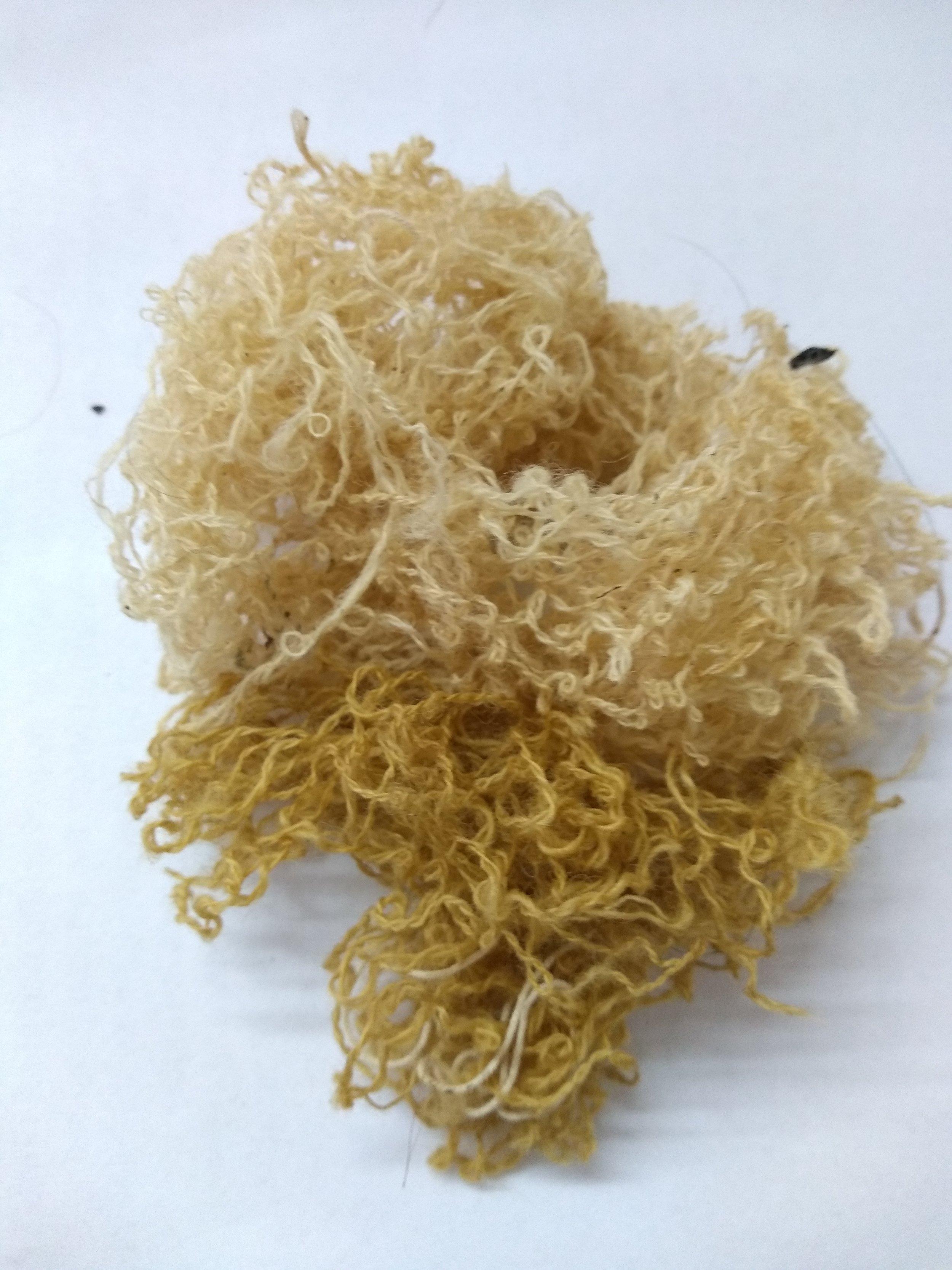Dyes yarn: Birch bark is soft cream and lichen is  green