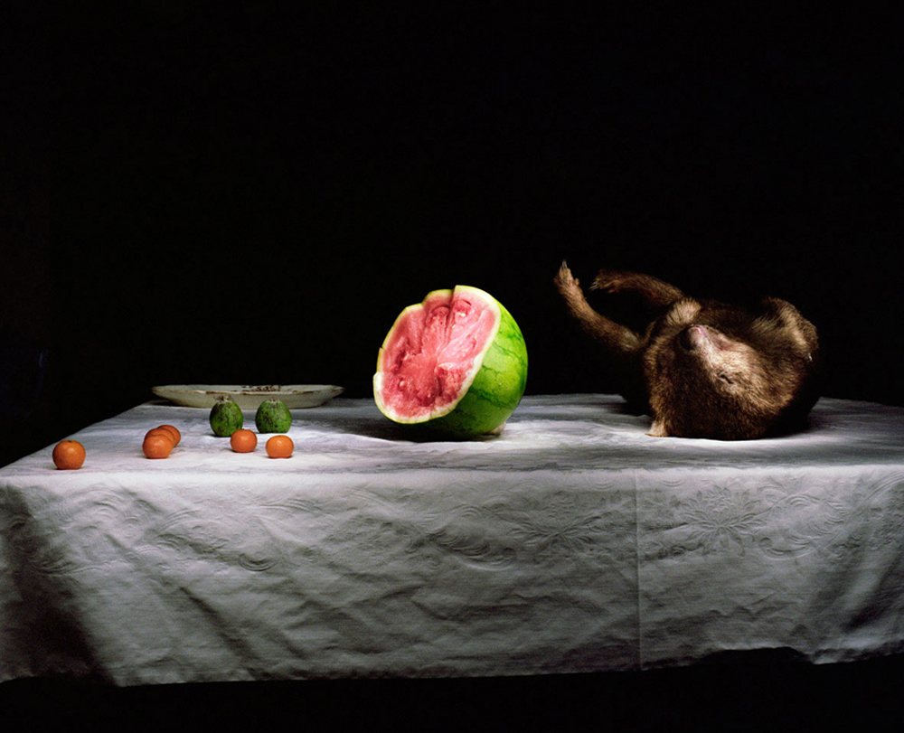 Drew-Wombat-with-plate-and-watemelon-Web.jpg