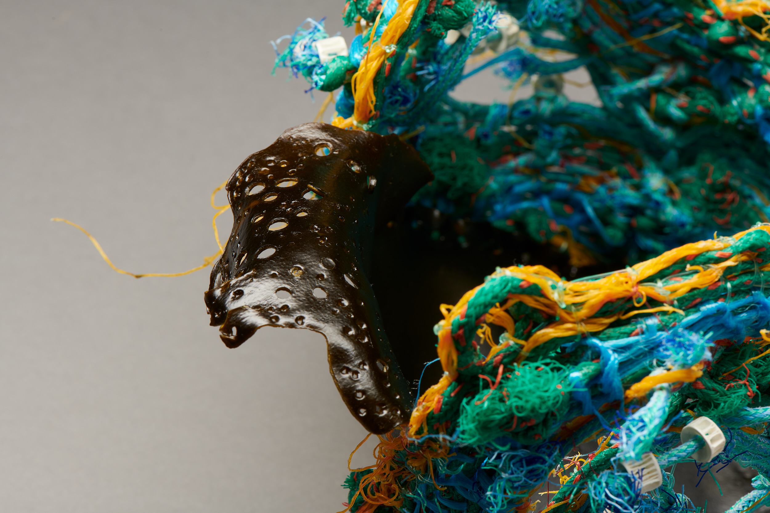 Beverly Meldrum, (detail)  Washed Up,  2018, ghost net, bailing twine, shark vertebrae, fishing line, kelp, 190 x 170 x 150mm. Photography Fred Kroh