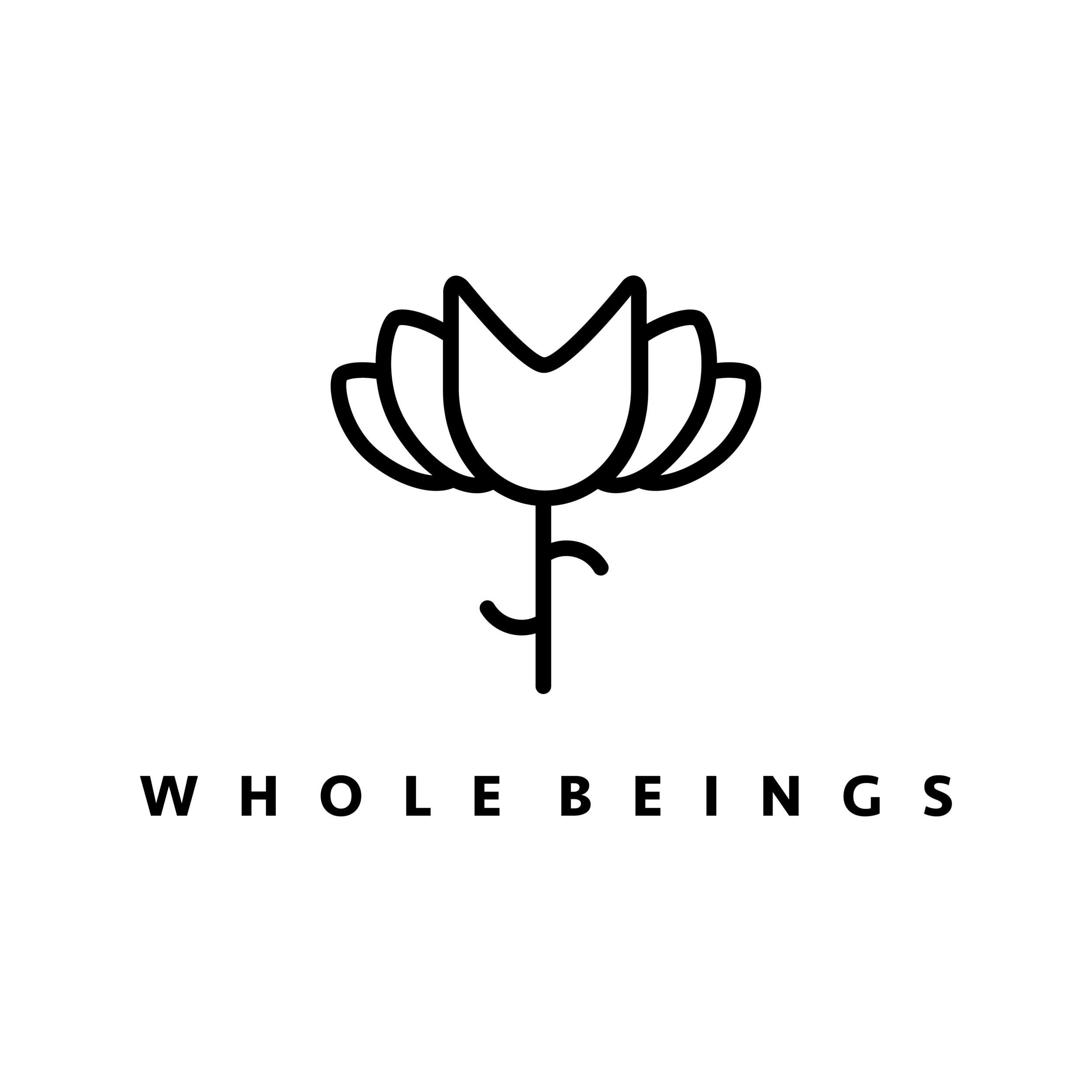 A logo that represented the ethos of the collective was created, nurturing the mind, body and spirit of every child through a sprout to lotus icon representing the growth of a child. - This logo has allowed the brand to be recognised by their icon alone, creating a true visual and market presence for the company.