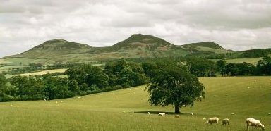 Apparently, Scot's magic split the splitting Eildon Hill into three!