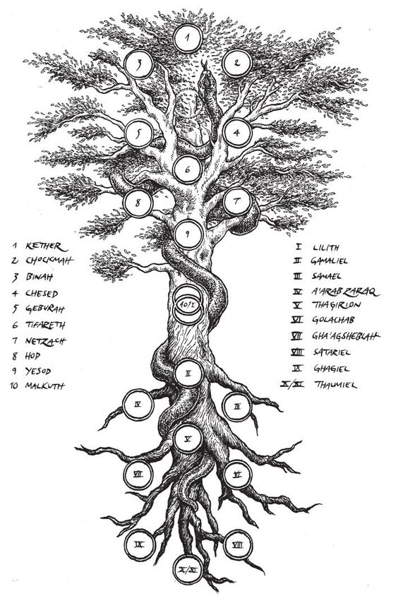 The Tree of Life of Kabbalistic creation.