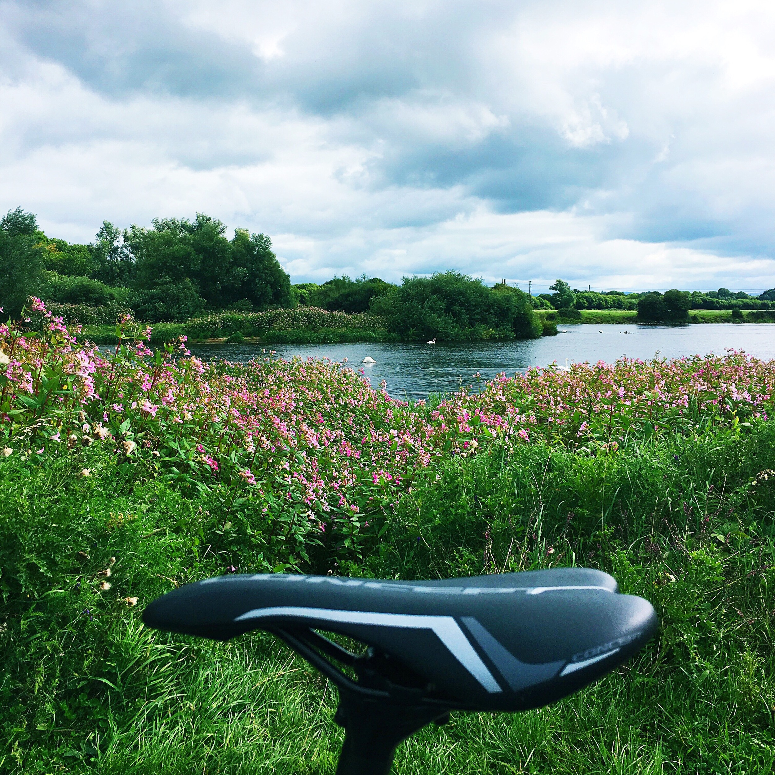 A view on the Shannon River on one of my cycles