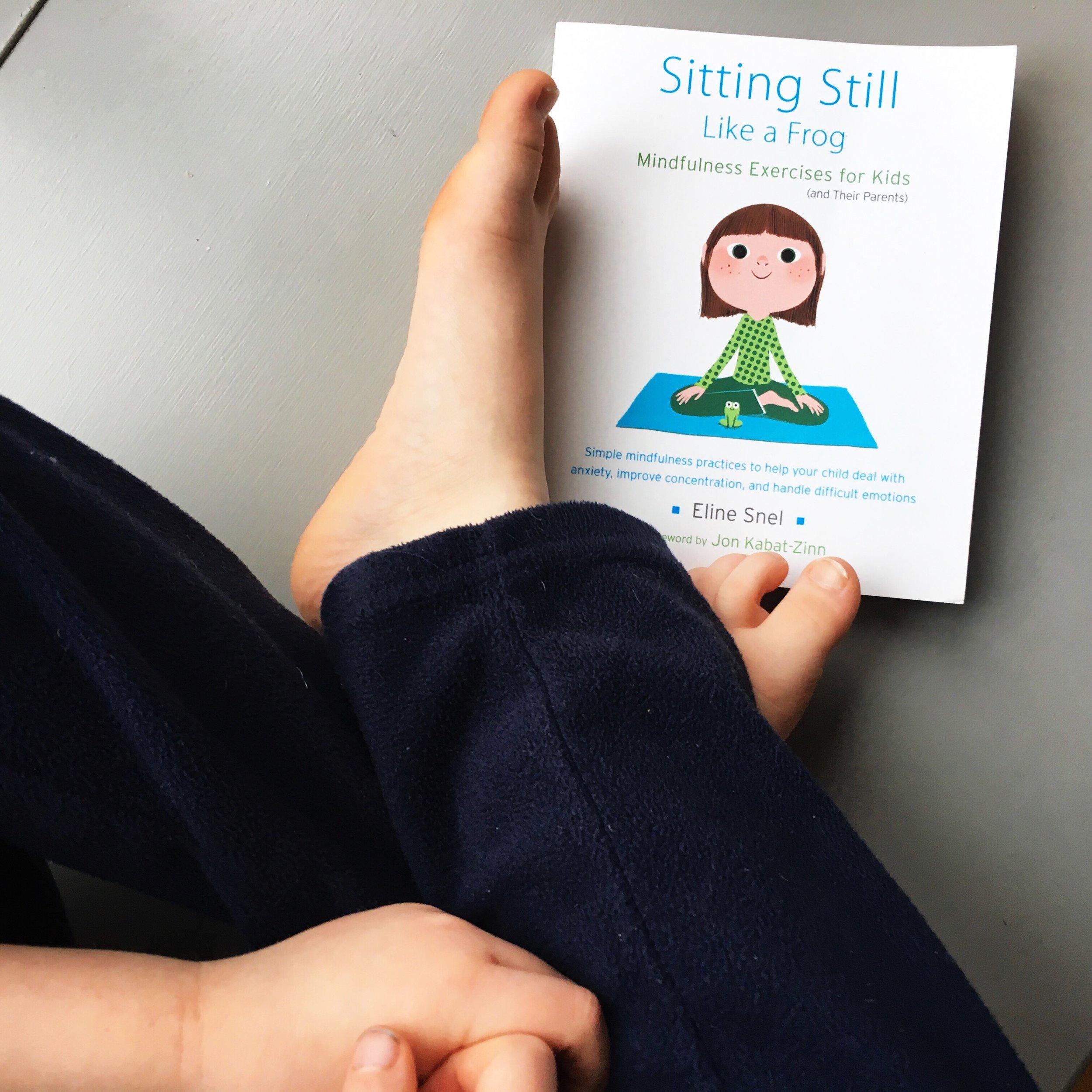 Sitting Still Like a Frog by Eline Snel