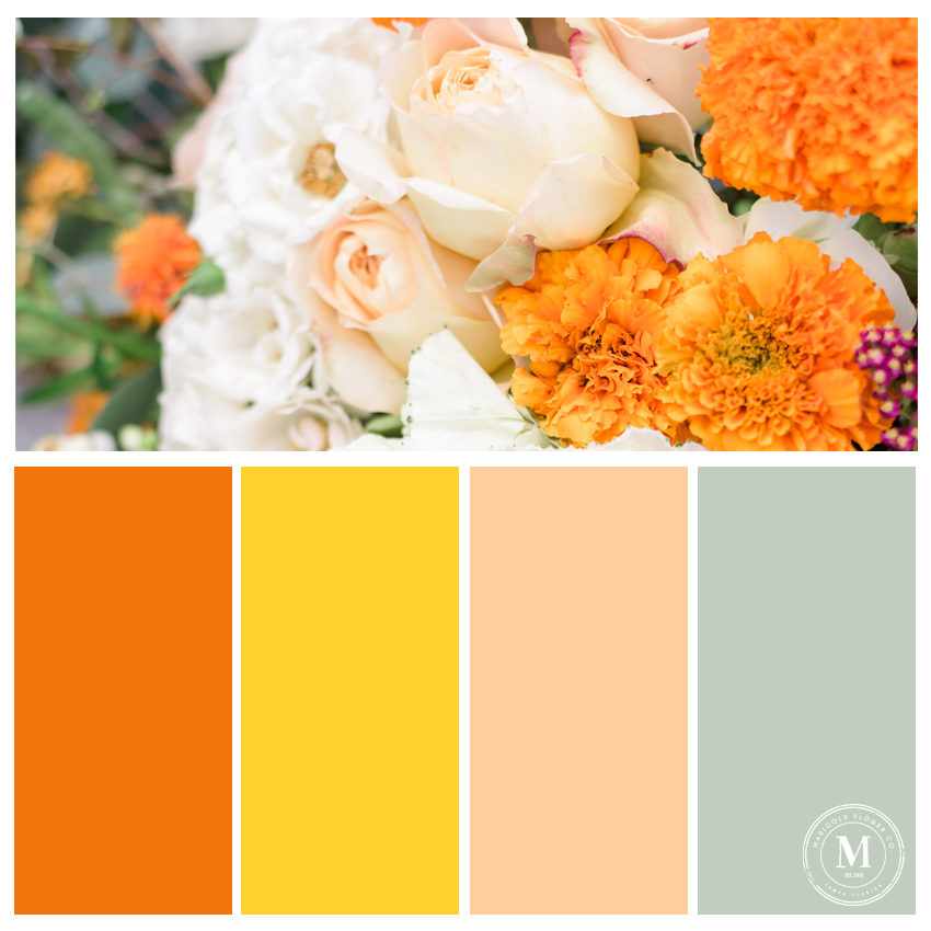 Fall_Palette5.png