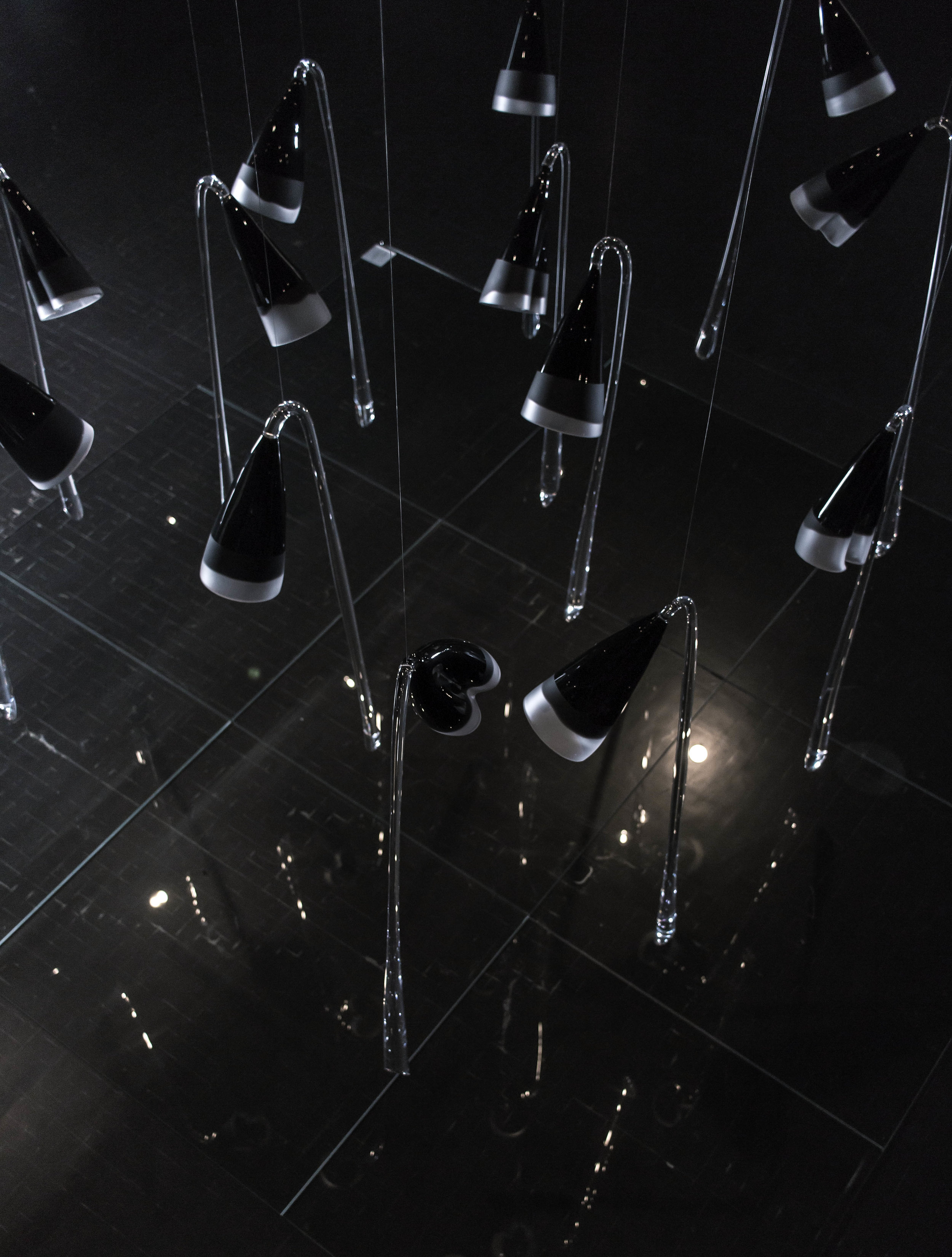 Where are all the black flowers 2016  Installation, 13 flowers, one approx. 1m