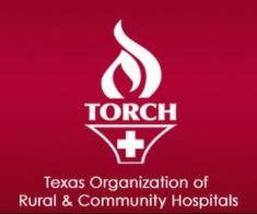 Torch Logo.png
