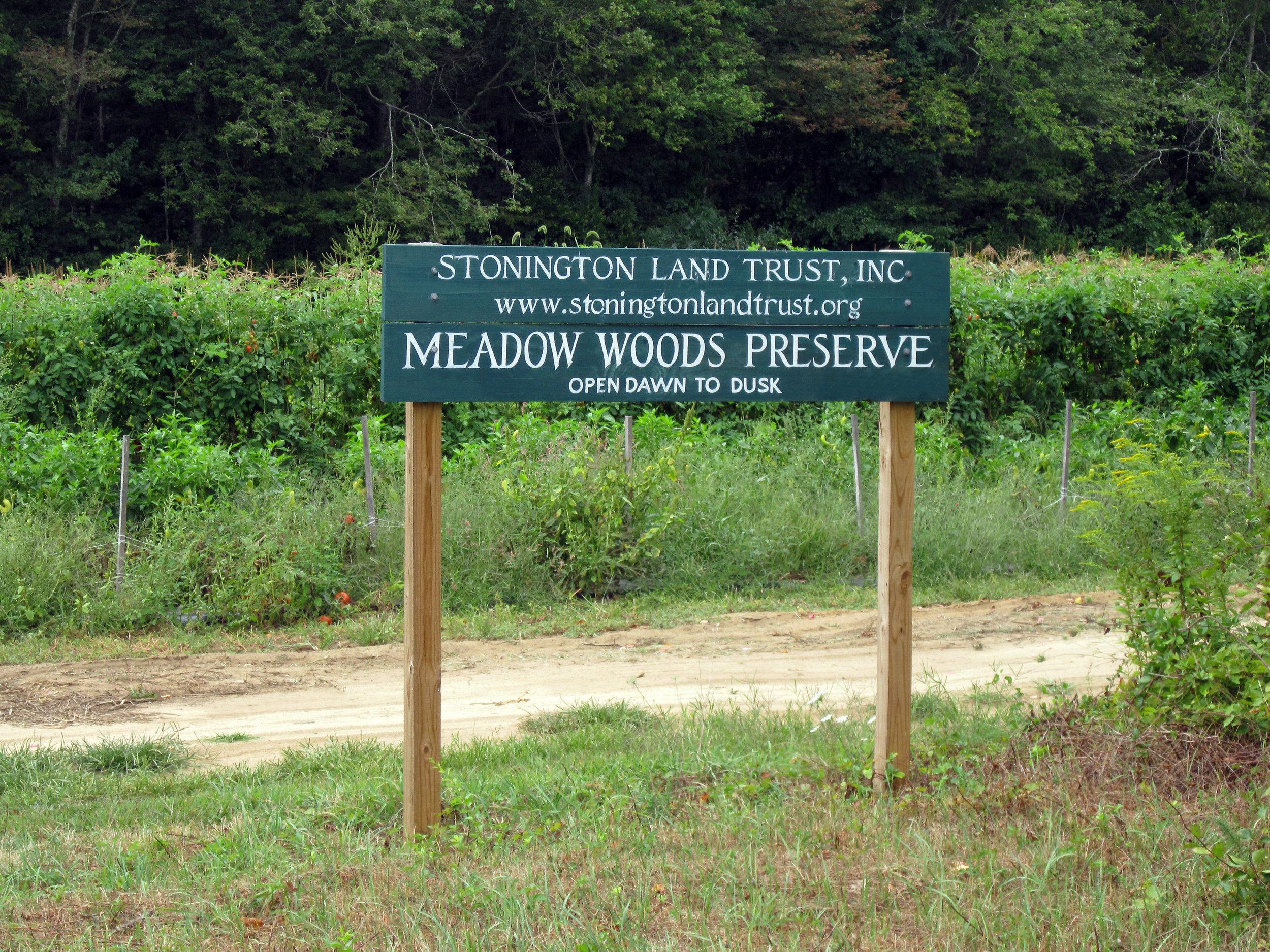 Meadow Woods Sign.jpg