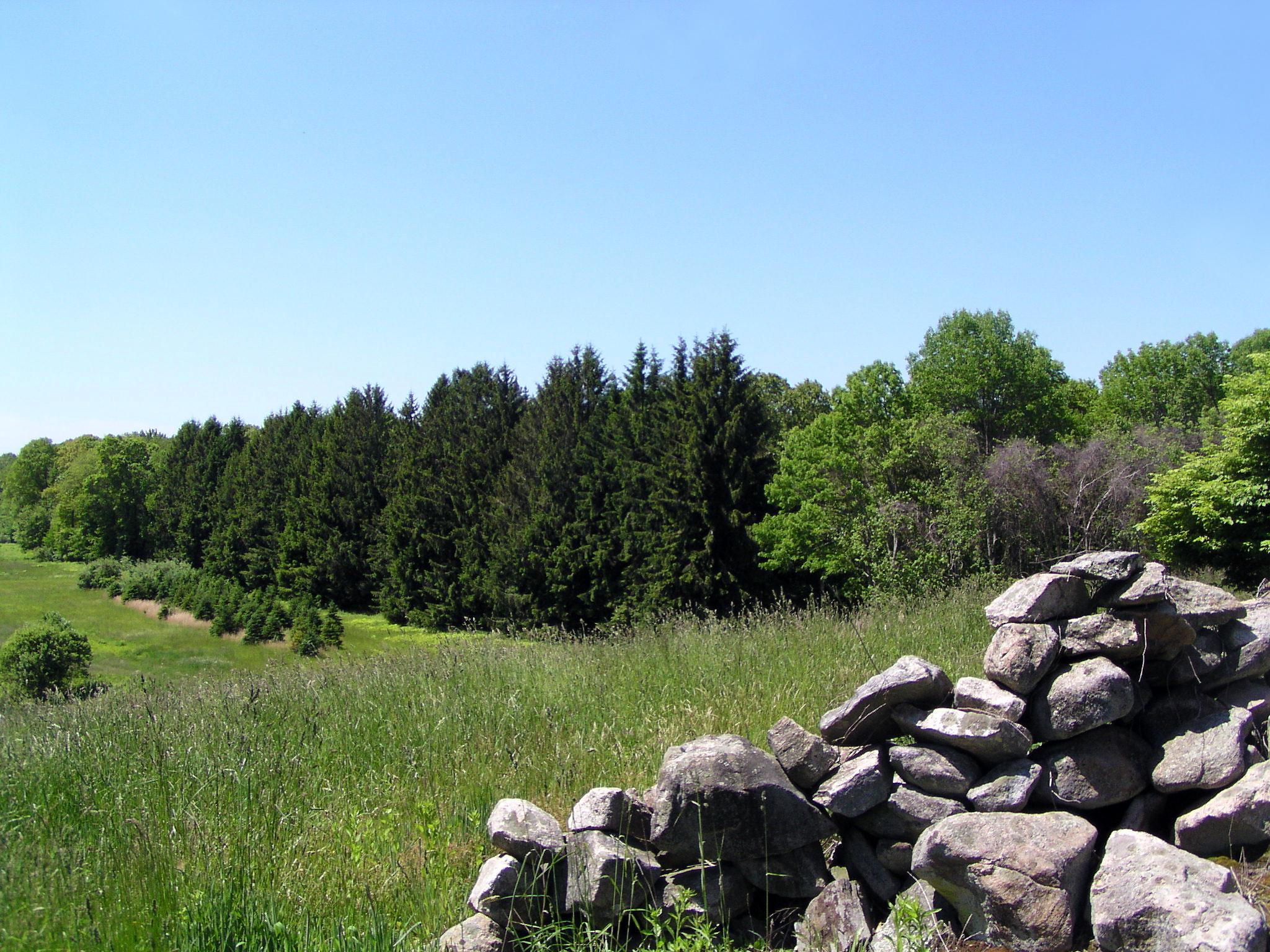 slt fusina new site stonewall field 1.jpg