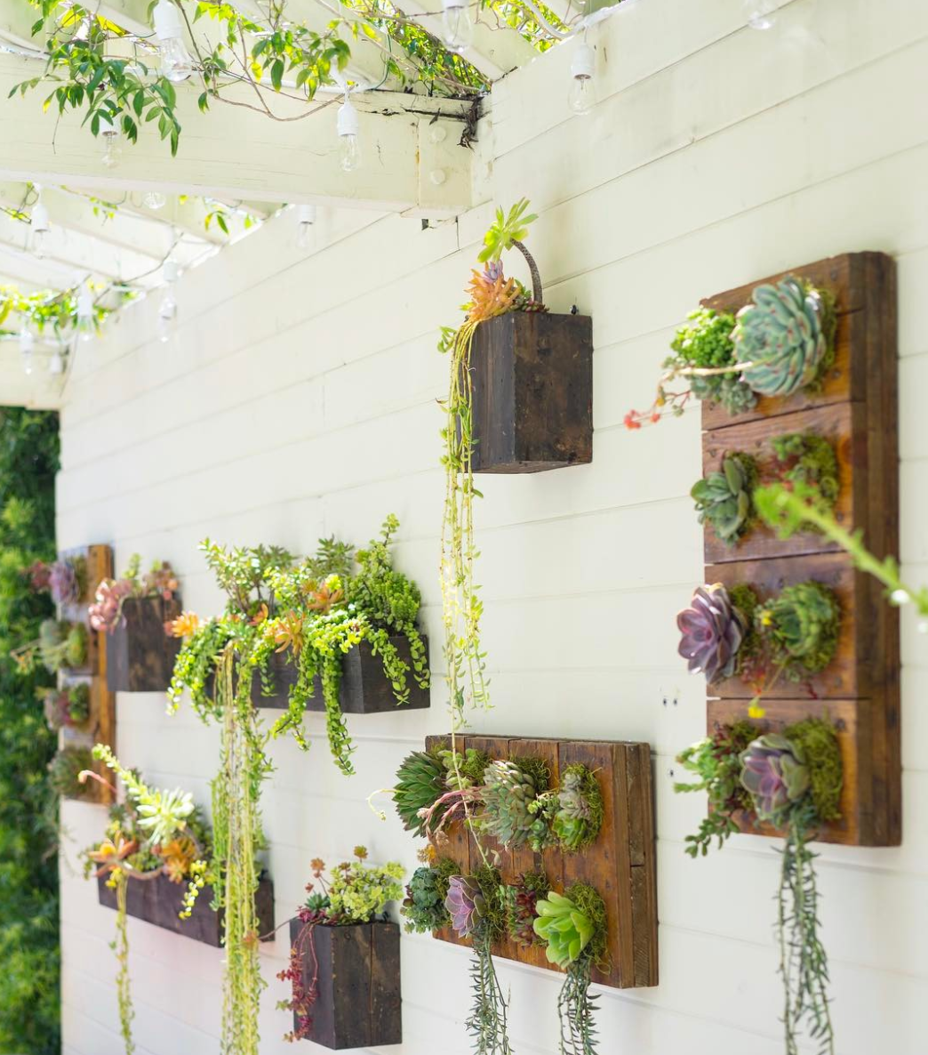 Dalla Vita  Landscape Designers create stunning vertical wall gardens that are drought resistant providing a lush look in your home.
